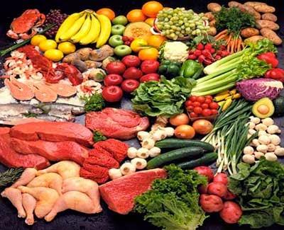 Foods for Bodybuilding; Nutrition