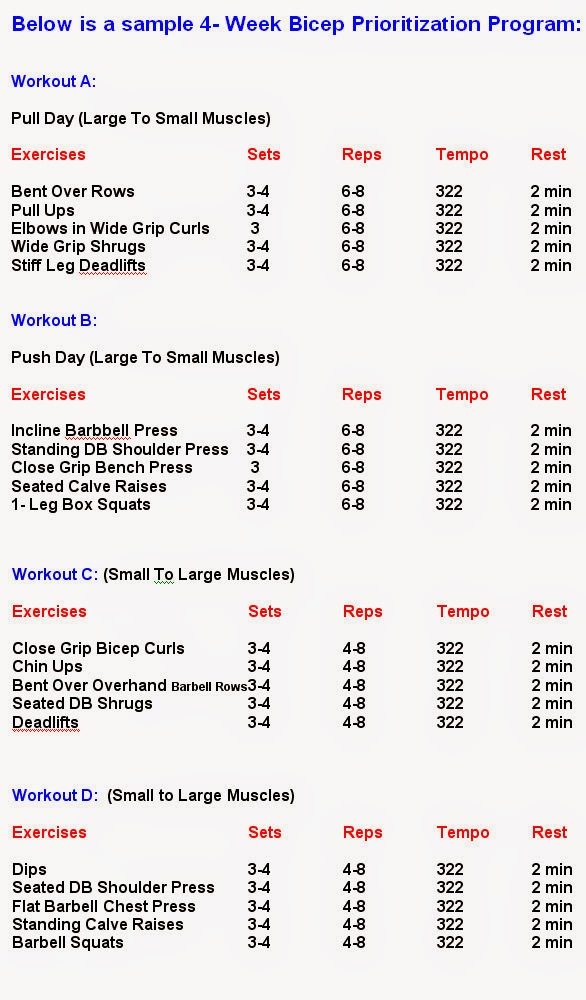 Best Bicep Workouts