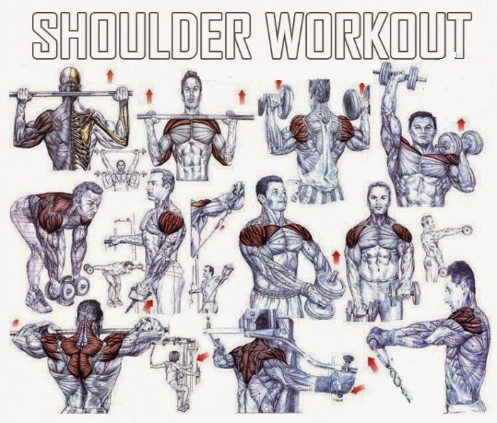 Shoulder Exercises For Mass