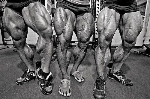 Squat  Weight Gain