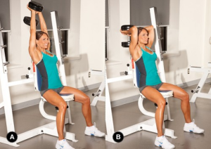 Seated arm extensions