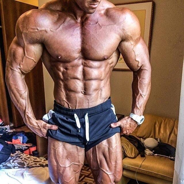 Best Bodybuilding Training Program