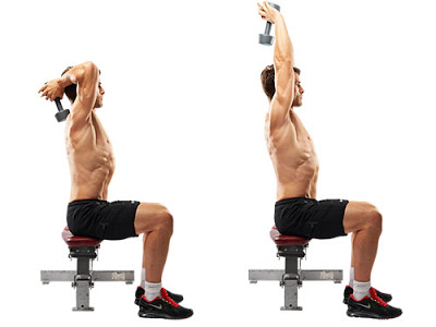 Seated One-Arm Dumbbell Triceps Extension