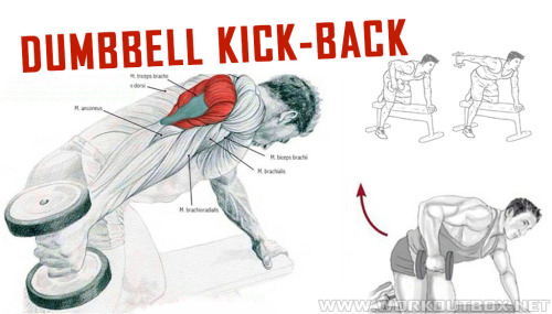 Tricep Dumbbell Kick Backs