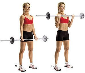 Bar Bell Curls