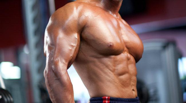Gain Mass Muscle