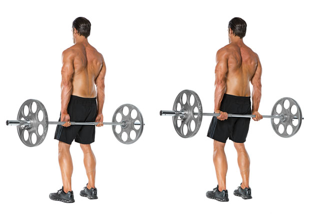 Behind the back forearm curls