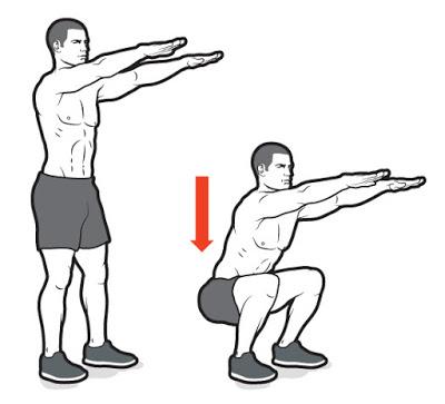 Squats :