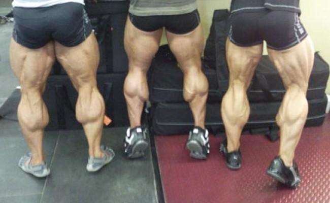 Calves Muscles