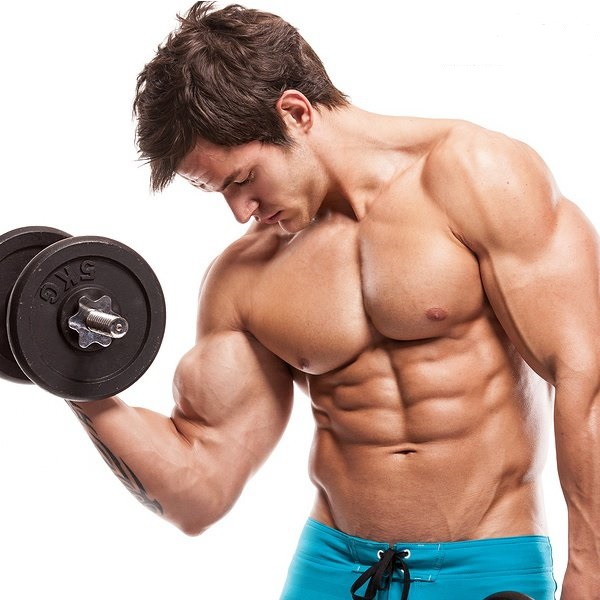 Build Muscle Fas