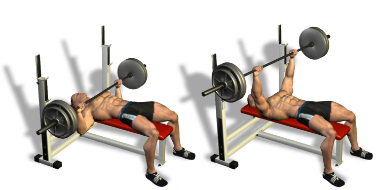Flat Bench Press Technique