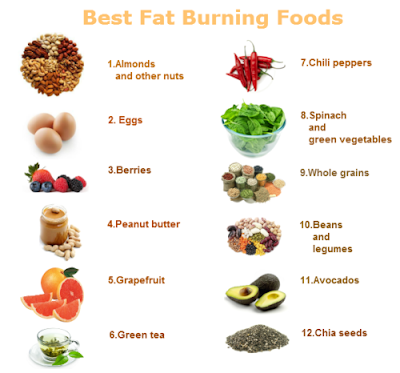 Top Muscle Building Foods: Top Fat Foods