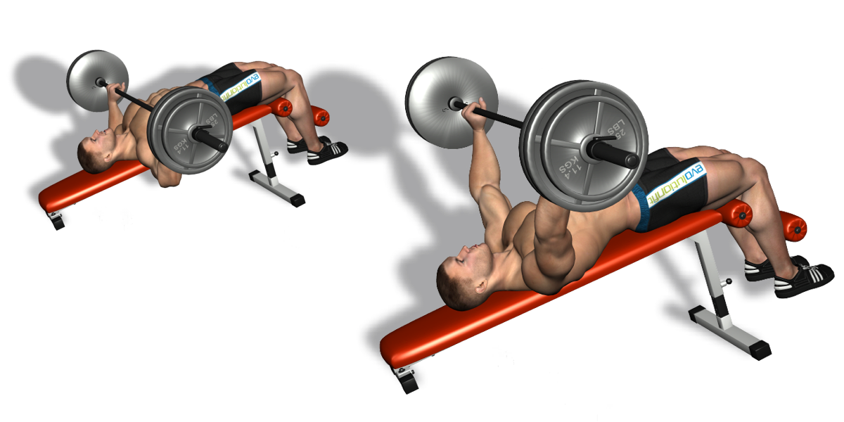 Decline Bench Press Technique