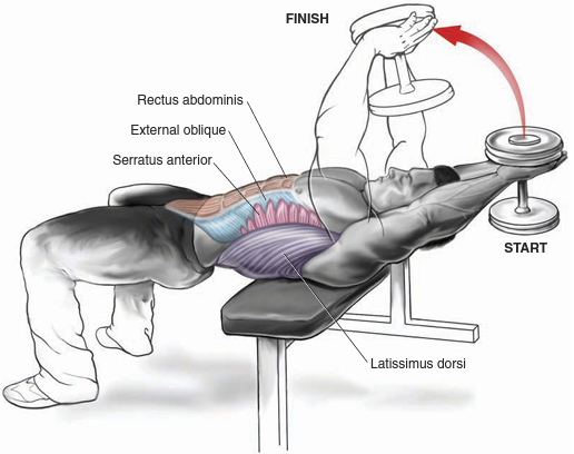 Bodybuilding Workout Routine