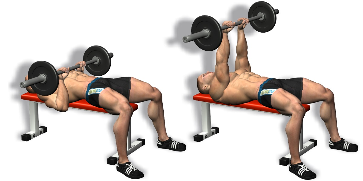 Best Triceps Workouts and Exercises For Muscle Building