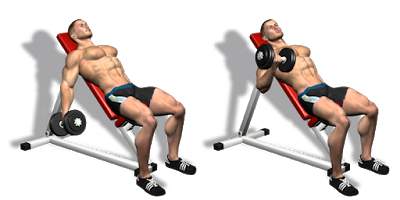 Incline Bench Dumbbell Curls