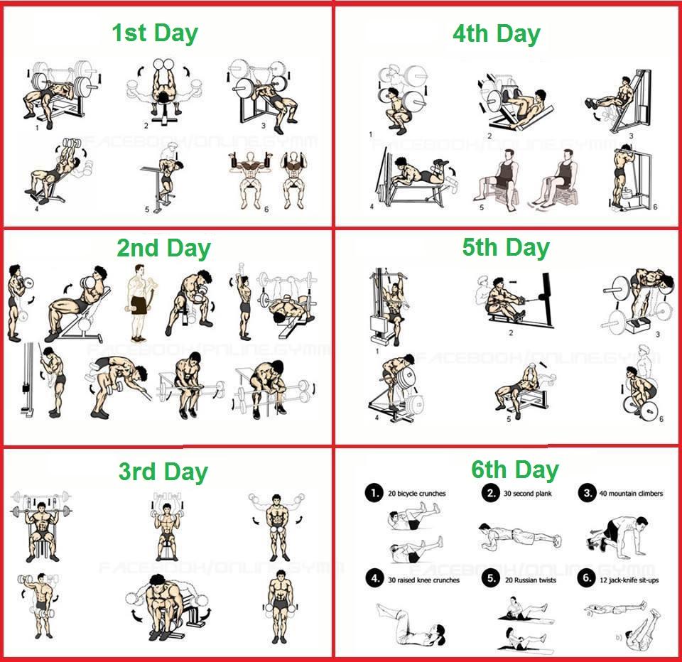 6 Day Bodybuilding Program