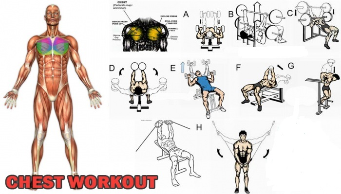 Workout Mistakes Beginners