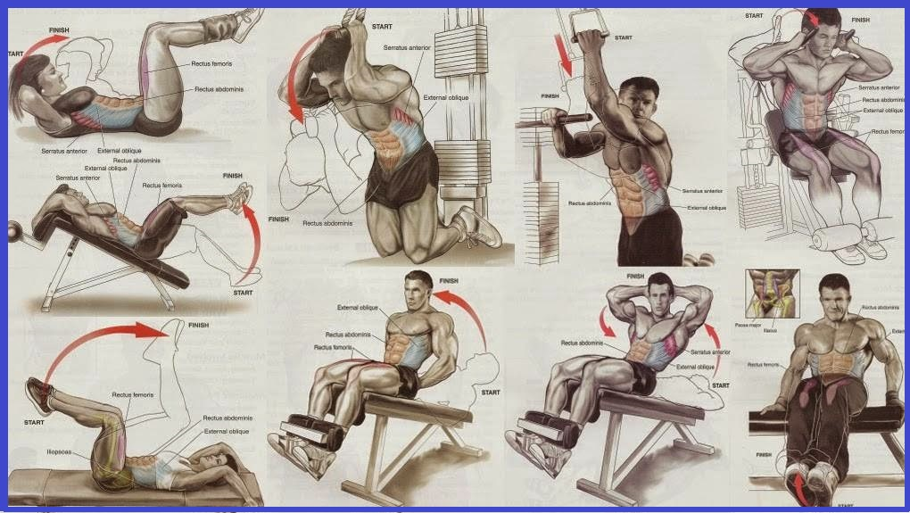 Best Abdominal Exercises