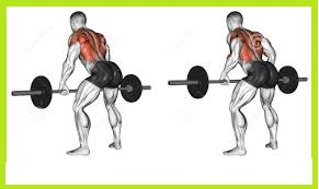 Bend Over Barbell Lift