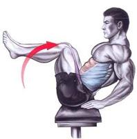Lower Abdominals, Hips - V Sit