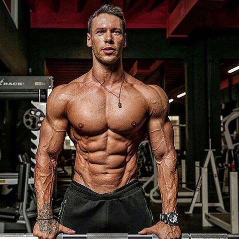 Best Muscle Fitness Training