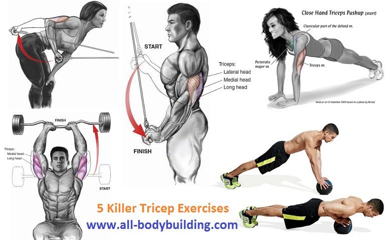 Killer Tricep Exercises