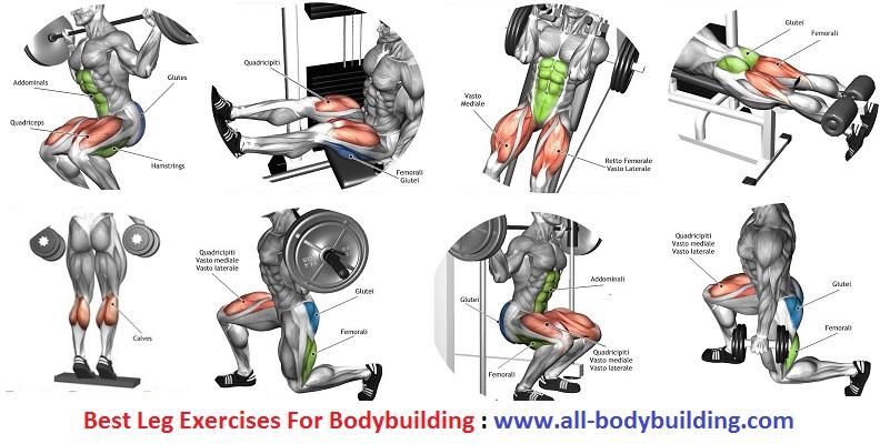 Leg Exercises For Bodybuilding