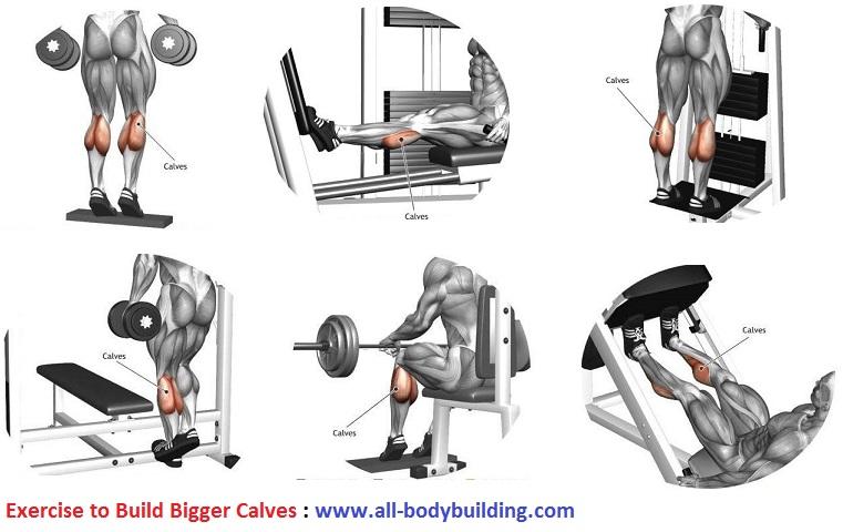Exercise to Build Bigger Calves