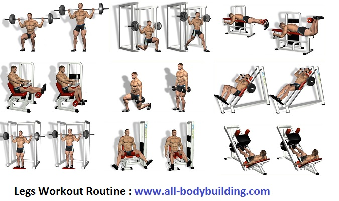 Legs Workout Routine