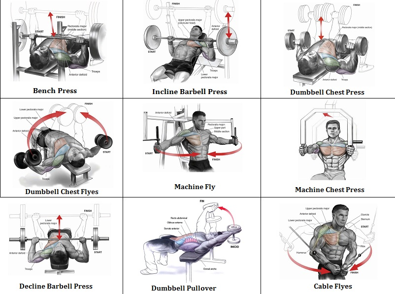 Workout Chest Routine