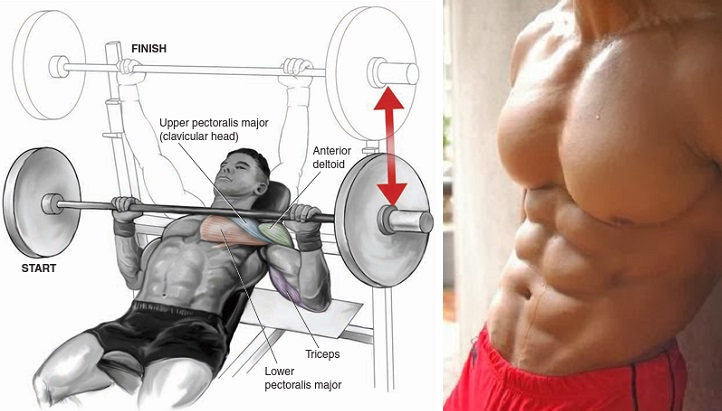 Chest Muscle Building Exercises