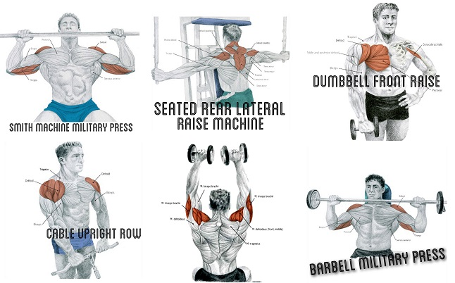 Exercise to Build Big Shoulder Muscles
