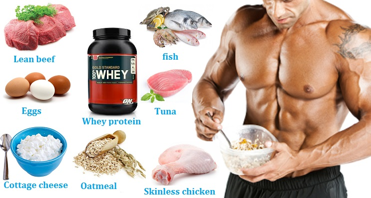 Muscle Building Nutrition Food