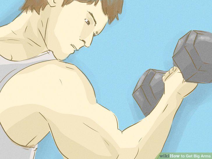 Reasons You Aren't Building Bigger Biceps