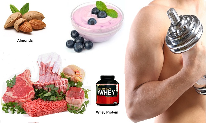 Foods For Larger Muscle Size