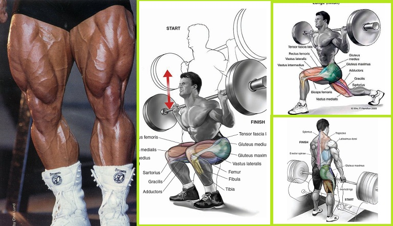 Barbell Exercises For Building Leg