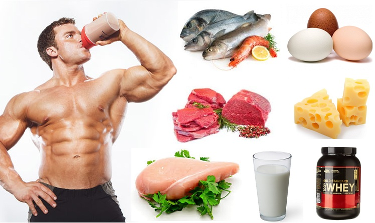 Best 5 Proteins For Building Muscle