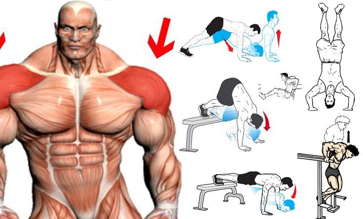 Best Bodyweight Shoulder Exercises