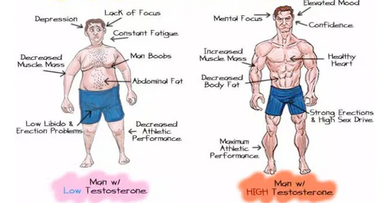 Boost Testosterone Levels And Build More Muscle
