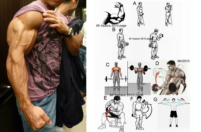 Arm Building Exercises