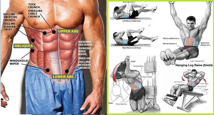 Best Exercises for Your Abs