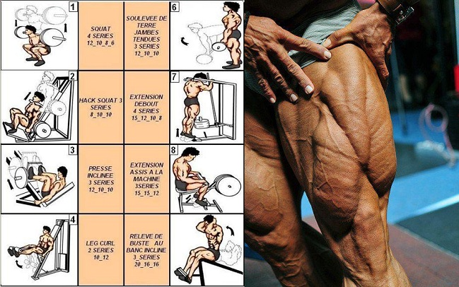 Bodybuilding Exercises For Your Legs