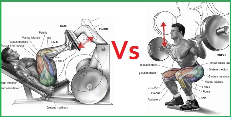 Difference Between Free Weights and Machines