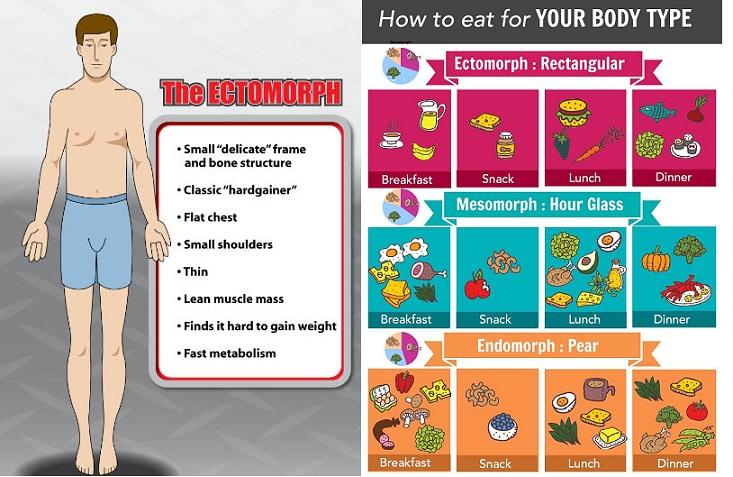 Ectomorph Diet
