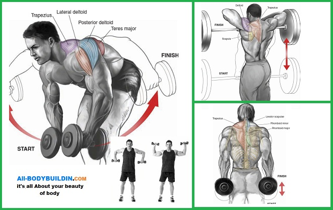 Stronger Back and Shoulders