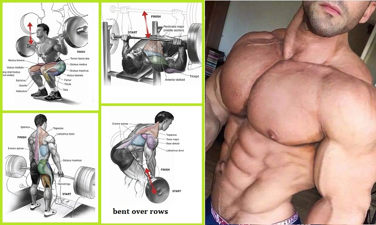 Best Exercises For Building Muscle