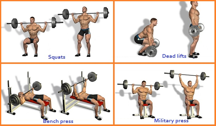 4 Most Effective Muscle Building Exercises