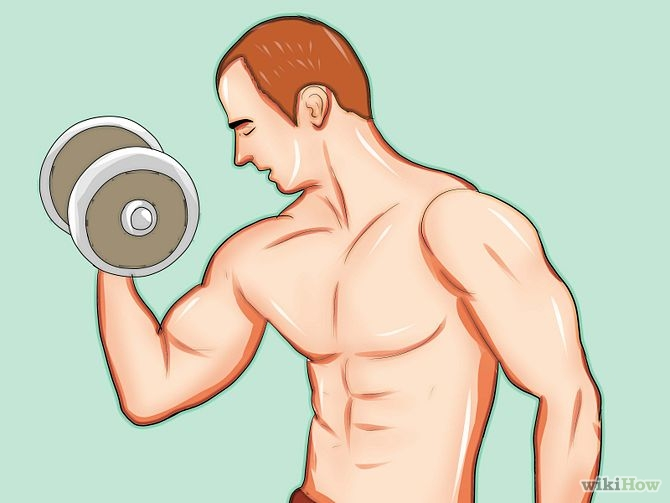 The Three Most Important Aspect in Muscle Building