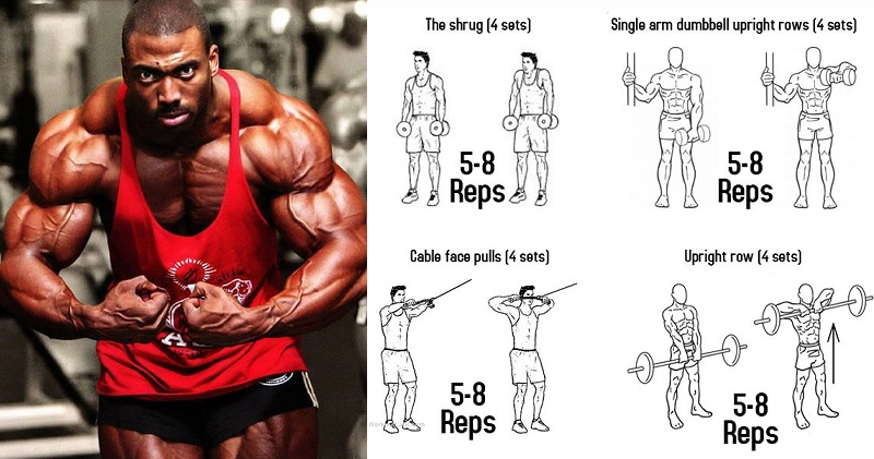 Build Huge Trapezius Muscles With New Trap Exercises